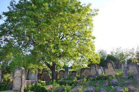 Cimitirul evreiesc din Podu Iloaiei